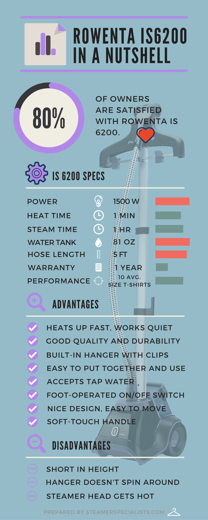 Rowenta IS6200 infographic with specifications, advantages and disadvantages