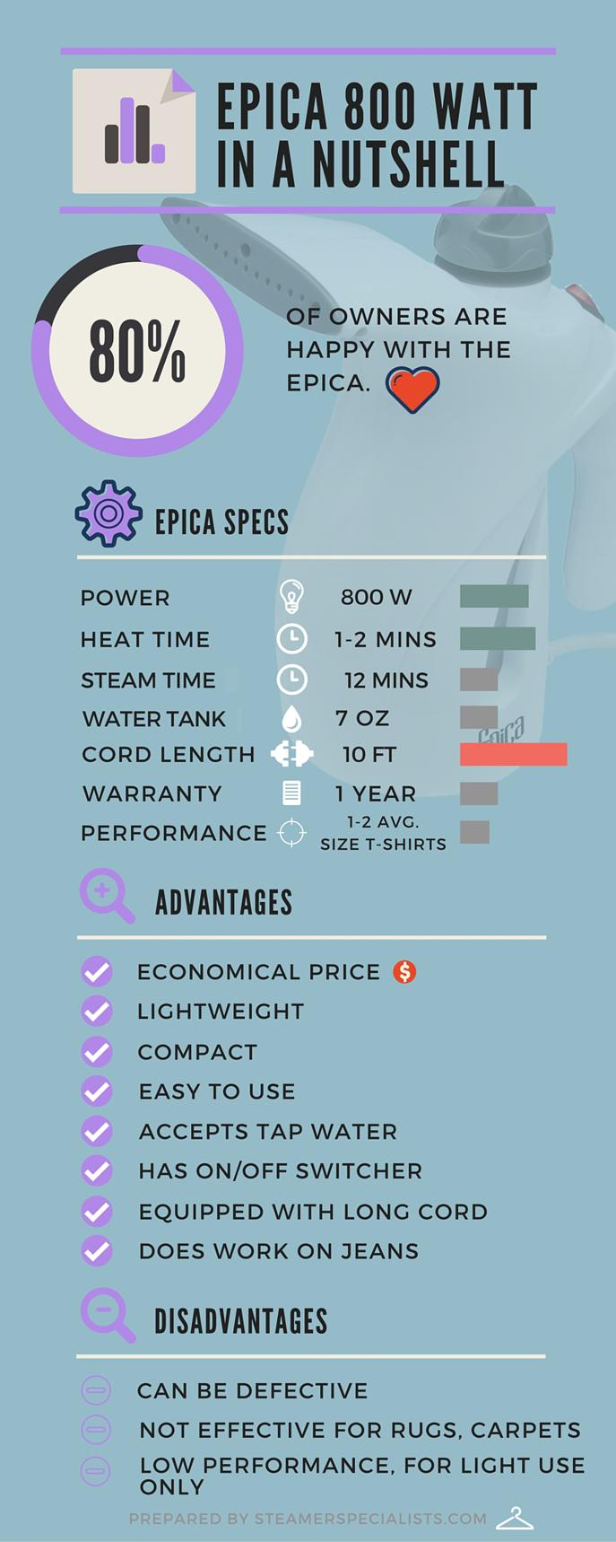 Epica 800 Watt Handheld Fabric Steamer Review Infographic