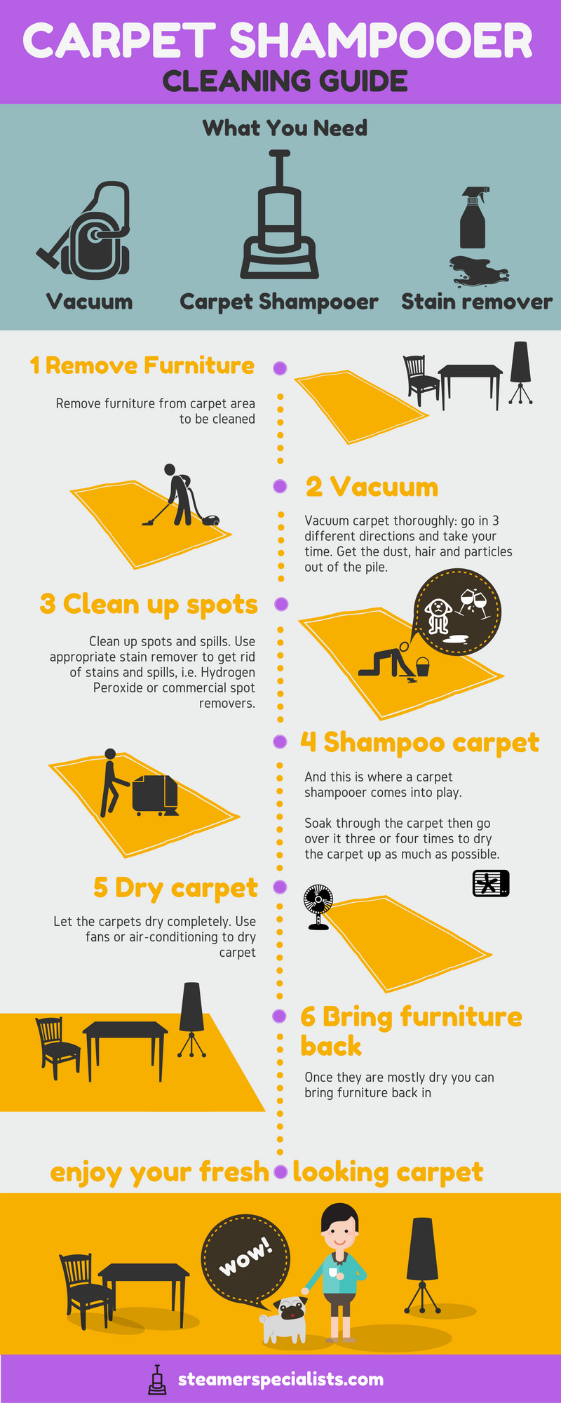 Carpet Shampooer Cleaning Guide Infographic
